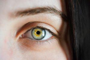 Augenbrauen und Auge